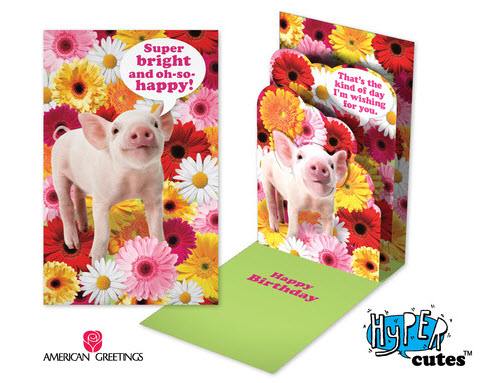 Hyper Cutes birthday cards from American Greetings